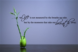 Life Is Not Measured By The Breaths We Take But By The
